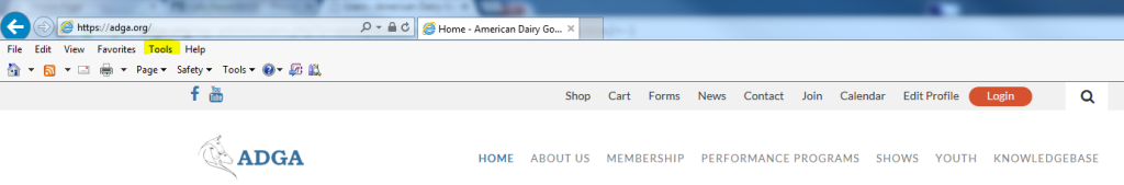 Tools Menu in Internet Explorer