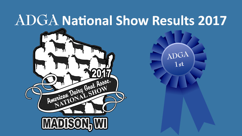 ADGA National Show results graphic